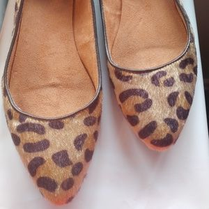 Gap Pointy Ballet Flats Leopard Calf Hair Size 8